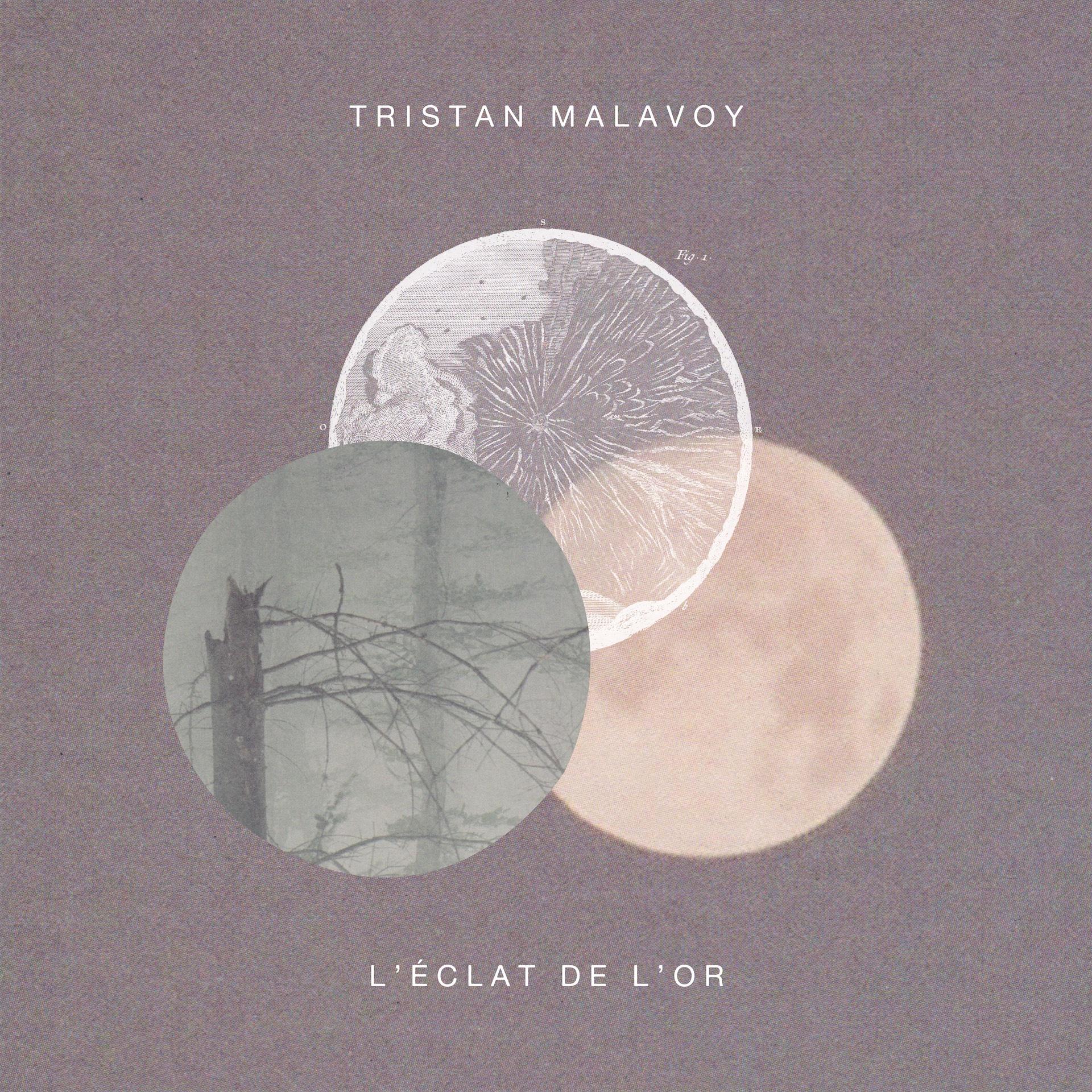 TRISTAN MALAVOY : Nouvel EP L'éclat de l'or maintenant disponible
